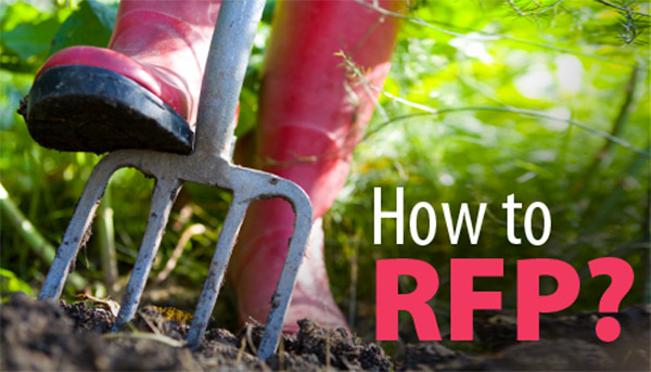 How to write a website RFP