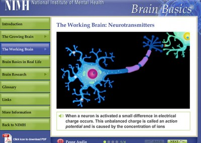 NIMH Educational Brain Presentation