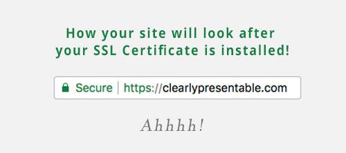 get an SSL certificate installed on your wordpress website